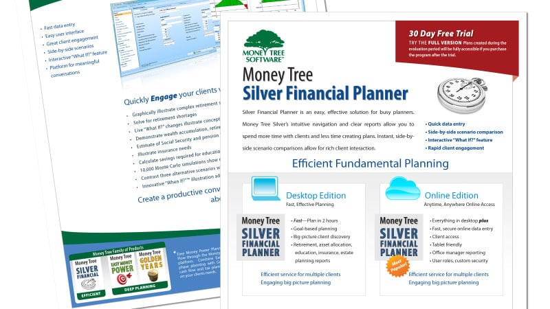 Graphic Design of Silver Financial Planning software brochure
