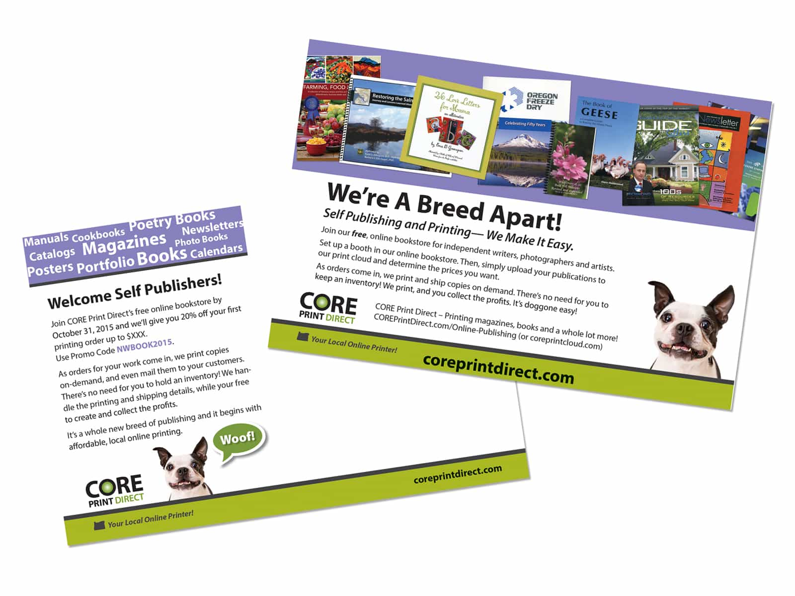 Graphic Design of Postcard Mailer promoting printer's online publishing capability